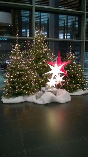 ACN – Weihnachtsfeier 2016