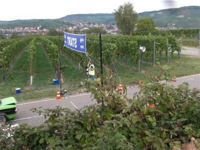 ACI Treffen Neckarsulm 2015 088