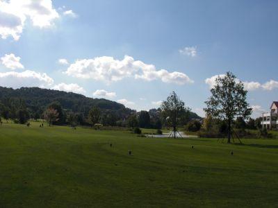 Golfturnier 2010 036