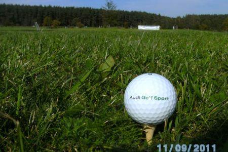 Golfturnier 2011 008
