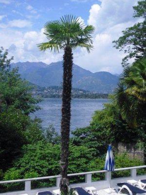 Schweiz 2011 064